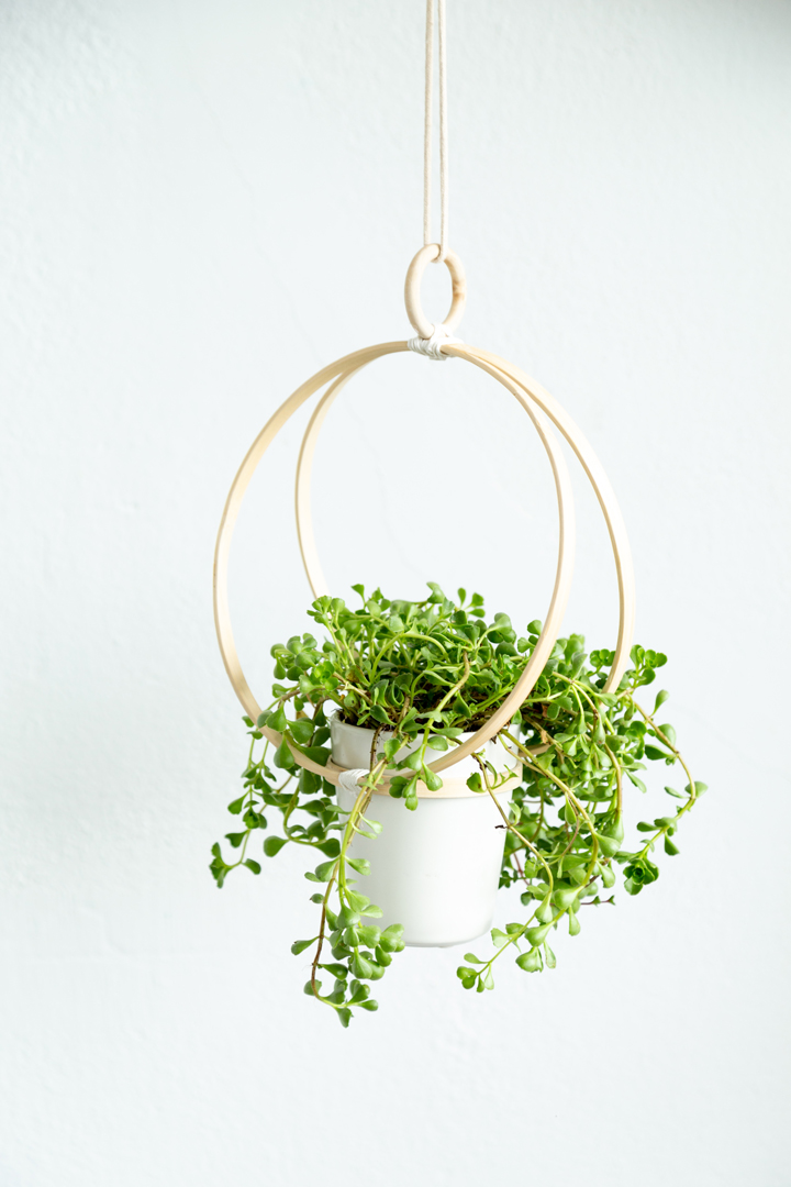 DIY Gifts for Mom: DIY Hanging Planter