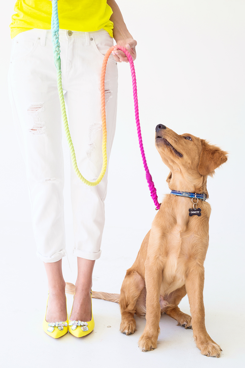 DIY Gifts for Mom: DIY Dog Leash